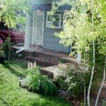 Back Patio and deck - decorative overlay